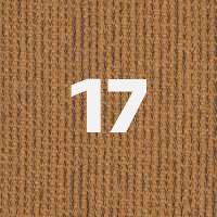 17. Cedar